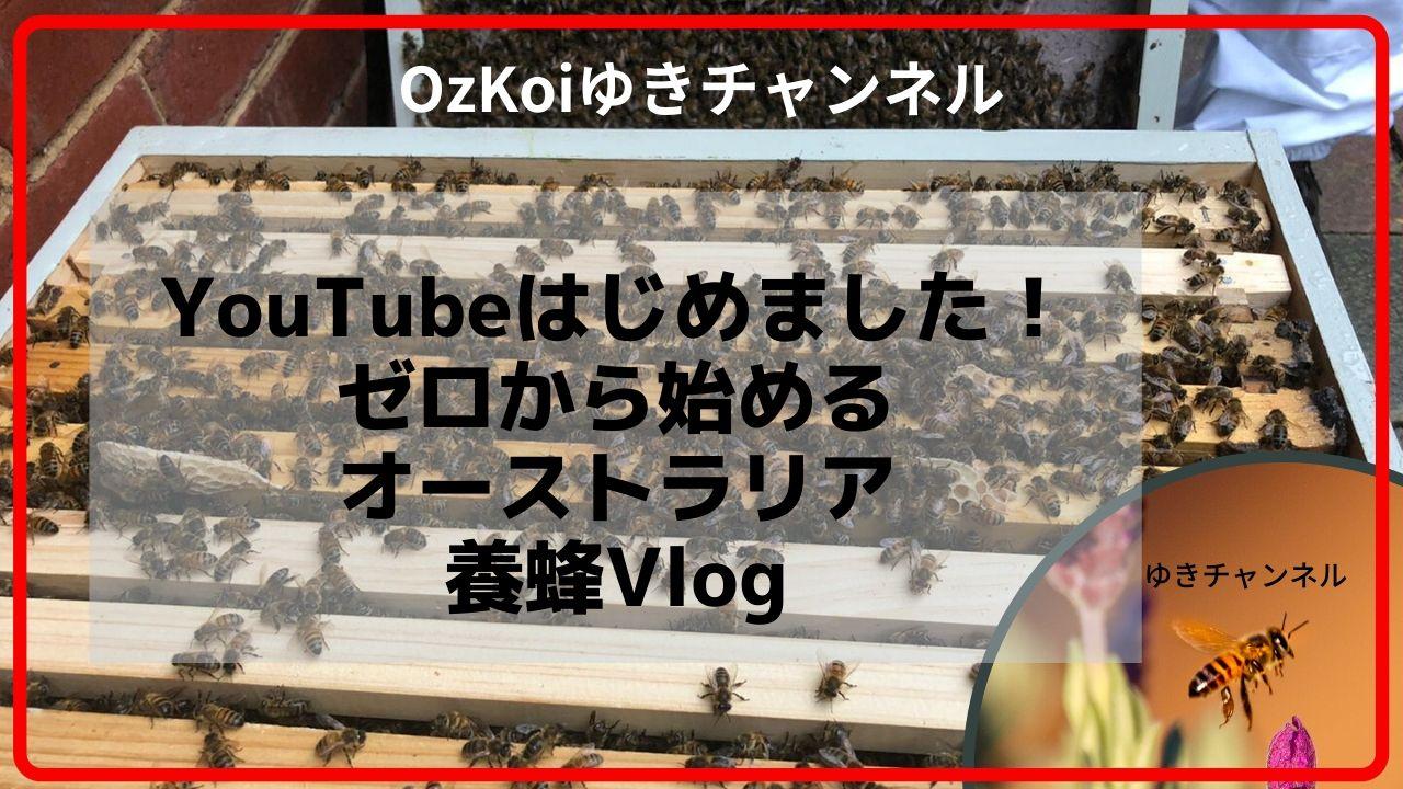 YoutubeゆきチャンネルOzKoi