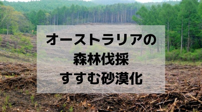 オーストラリアの 森林伐採 すすむ砂漠化OzKoi